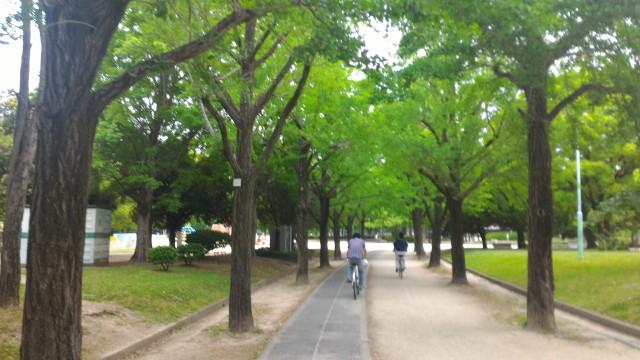 千種公園(名古屋市千種区)のサイクリングロード