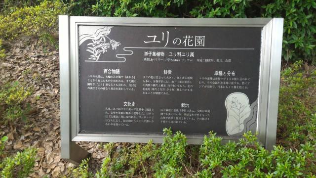 千種公園(名古屋市千種区)ユリの花園の案内板