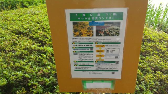 千種公園(名古屋市千種区)デジタルフォトコンテスト案内