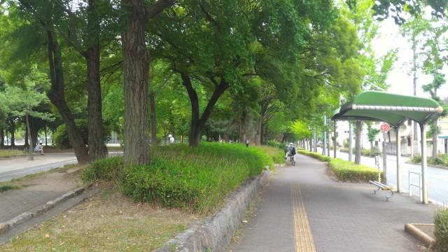 千種公園(名古屋市千種区)の西に隣接しているしバス停と公園