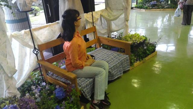 荒子川公園(名古屋市港区)ガーデンプラザ内のラベンダーの展示と撮影スポット