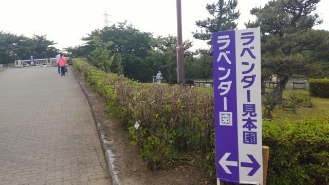 荒子川公園(名古屋市港区)ラベンダー園とラベンダー見本園の看板
