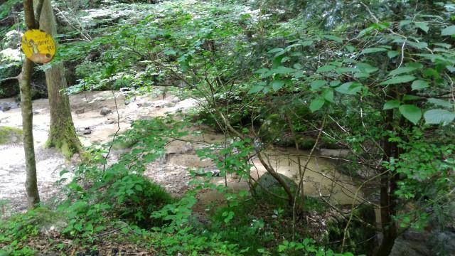 岐阜県恵那市「寿老の滝」から川遊びでのできるところ