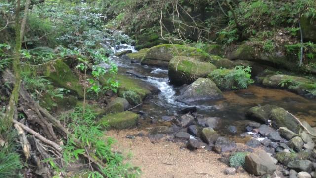岩屋堂公園(愛知瀬戸市)水(川)遊び天然プールの上流岩場