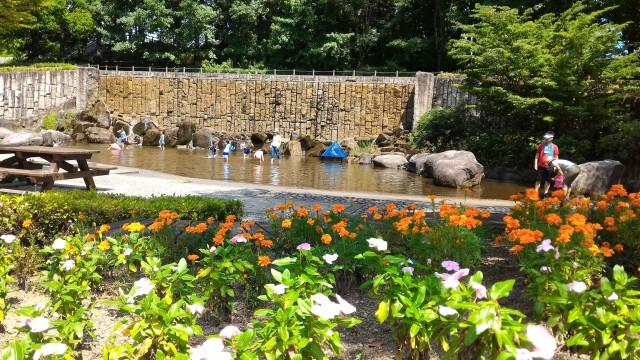 愛知県小牧市市民四季の森の「虹の滝」水遊び場植木と
