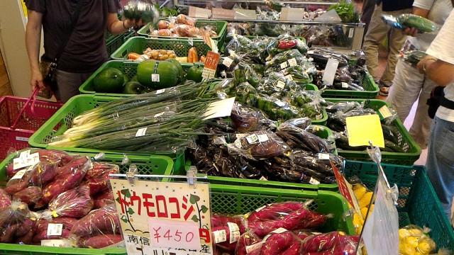道の駅「どんぐりの里いなぶ」どんぐり横丁の地元の朝どれ野菜