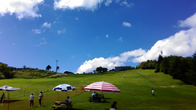 茶臼山高原の風景ドッグラン、草原
