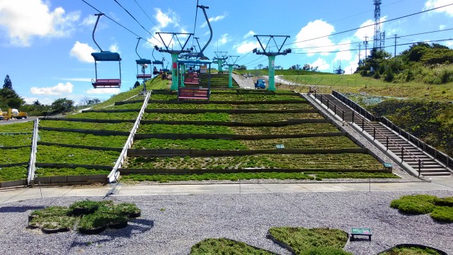 茶臼山高原萩太郎山にある芝桜の丘今は緑リフトの下