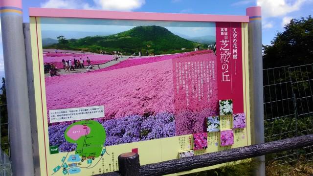 茶臼山高原萩太郎山にある芝桜の丘天空の花回廊の解説