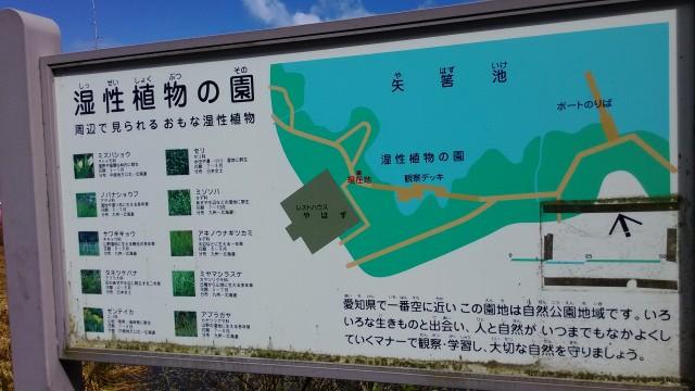 茶臼山高原の矢筈池(やはずいけ)の周辺の植物の案内図