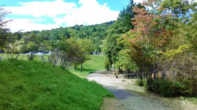 茶臼山高原の矢筈池(やはずいけ)の周囲の散策路