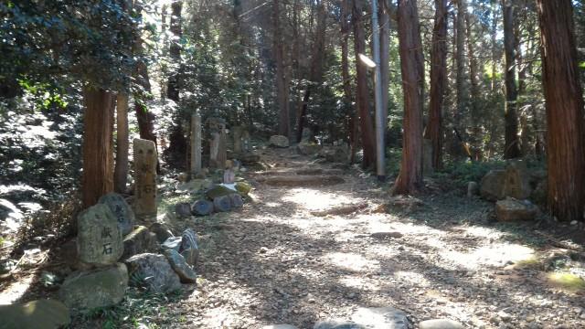 「尾張富士大宮浅間神社」中宮付近の献石と山道