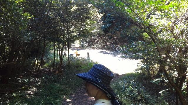 尾張富士(大宮浅間神社奥宮)からの下り舗装した道にでる