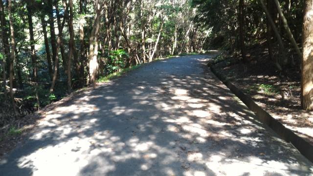 尾張富士(大宮浅間神社奥宮)からの下り舗装したきれいな道