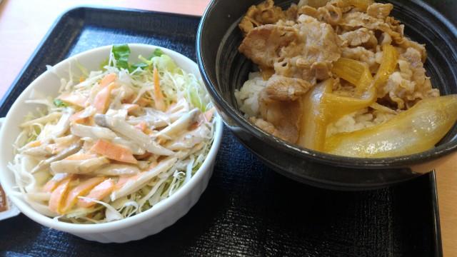 吉野家牛丼小盛のゴボウサラダセット