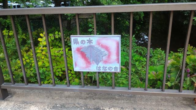 朝宮公園(愛知県春日井市)のふれあい橋県の木