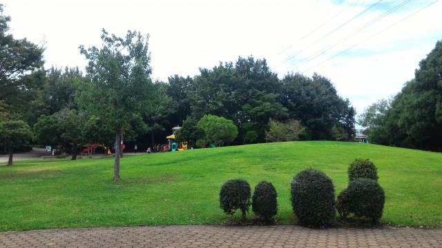 朝宮公園(愛知県春日井市)の児童園の芝生の山