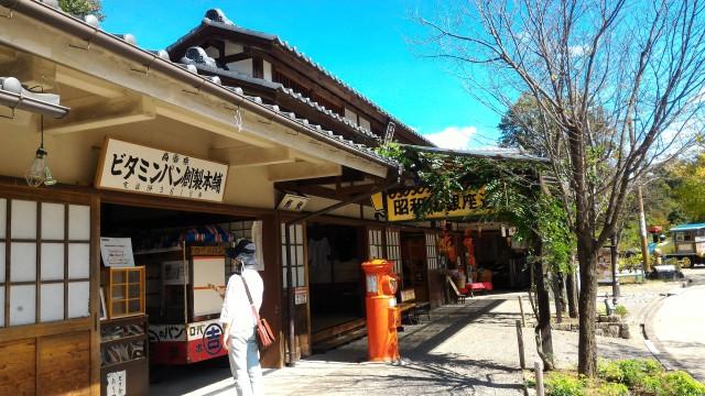 日本昭和村(岐阜県美濃加茂市)の玉緒の家付近の銀座商店街