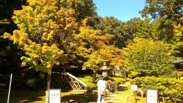 日本昭和村(岐阜県美濃加茂市)のお茶室紅葉のはじまり