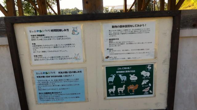 日本昭和村のふれあい牧場での遊び方