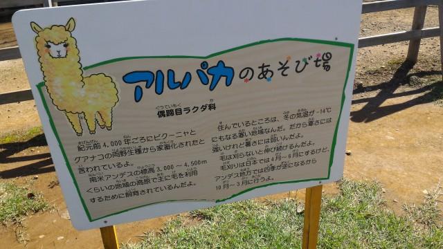 日本昭和村のふれあい牧場アルパカのあそび場の看板