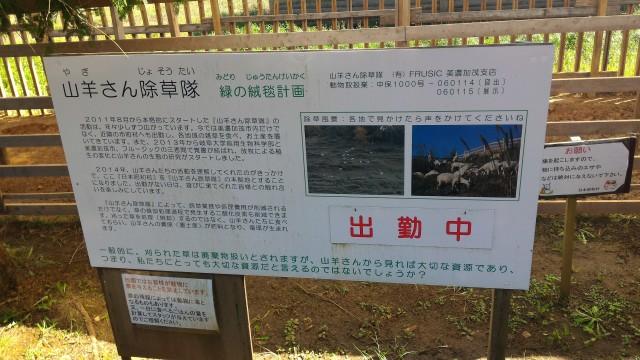 日本昭和村のふれあい牧場、ヤギの除草隊