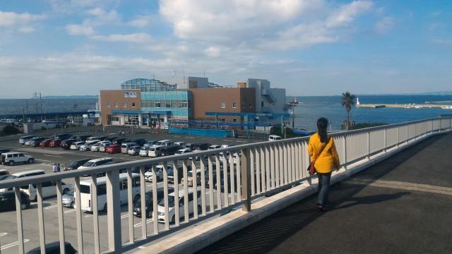 伊良湖岬・フェリー乗り場付近の海と駐車場