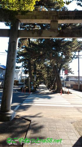 静岡県静岡市の「美穂神社」から三保の松原への「神の道」鳥居から