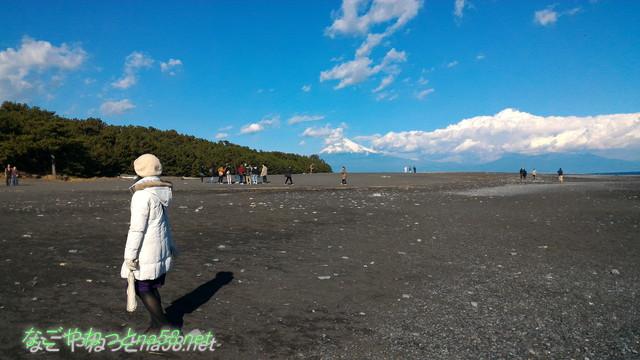 富士山世界文化遺産の構成資産に登録された三保の松原と海岸から見る雪化粧の富士山
