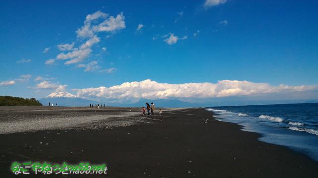 三保の松原の海岸、富士山をバックに