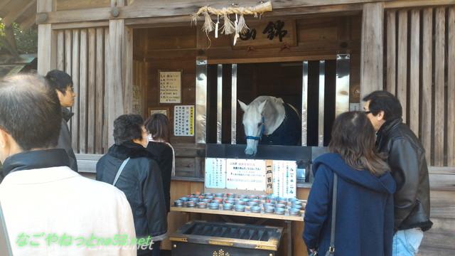 三重県桑名市の多度大社の白馬「錦山」