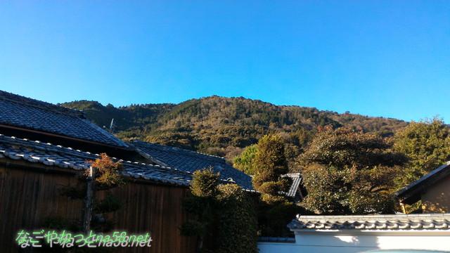 鯉料理「大黒屋」(三重県桑名市)の広い建物と敷地の裏は多度山