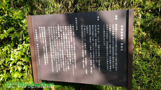 天然記念物柿田川湧水の解説