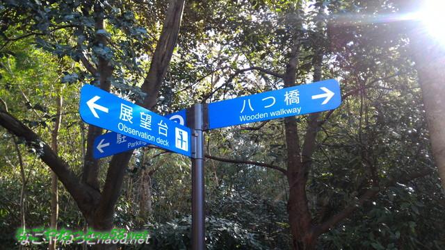 天然記念物柿田川湧水の散策路に分かりやすい道標がある
