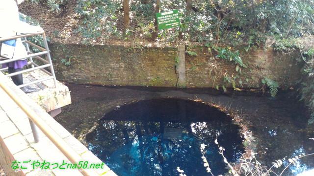 柿田川湧水群第二展望台からの湧き水(人気スポット)