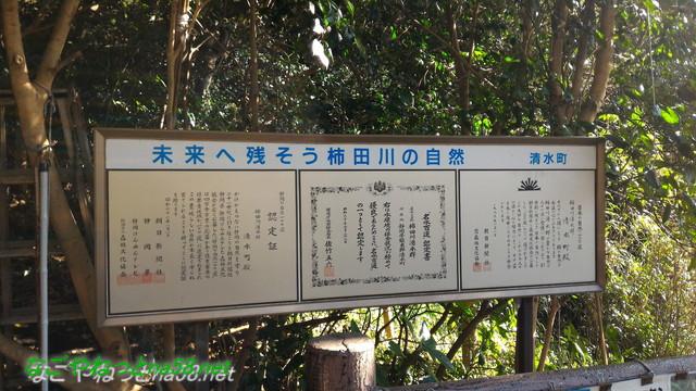 柿田川湧水群第一展望台の柿田川の自然への受賞(静岡県清水町)
