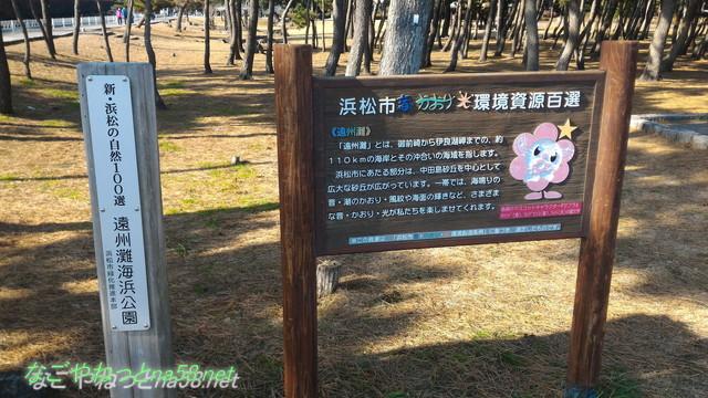 中田島砂丘(静岡県浜松市)入り口にある遠州灘の説明看板