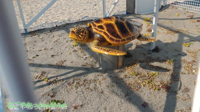 中田島砂丘(静岡県浜松市)ウミガメの産卵地