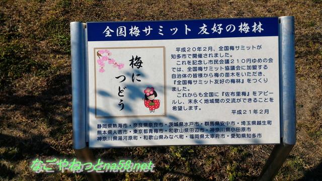 佐布里池の梅林(愛知県知多市)全国梅サミットの看板