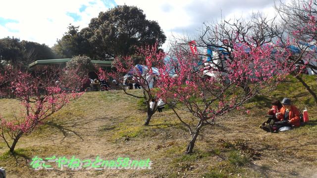 佐布里池の梅林(愛知県知多市)池を見ながらランチ売店あり