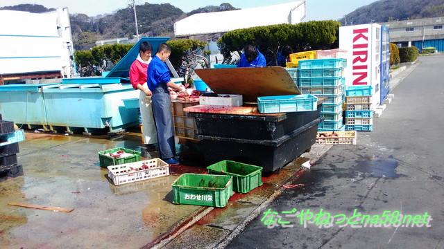 愛知県南知多豊浜「魚ひろば」の外でさばいている漁師さん