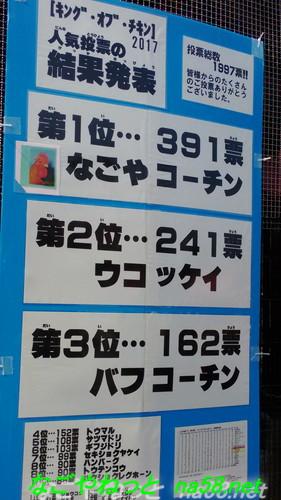 名古屋市農業センター(でらファーム)の鶏人気投票