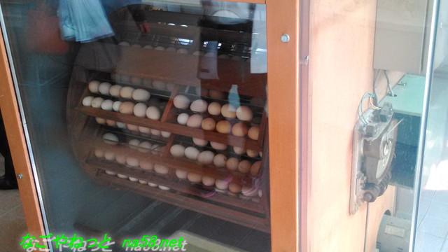 名古屋市農業センター(でらファーム)のふ卵器