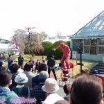 名古屋市農業センターでらファームのしだれ梅まつり梅園での大道芸人