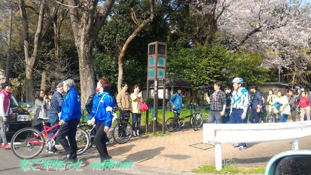 名古屋市中区名城公園の桜と市長さん