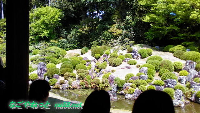 大河ドラマ「おんな城主直虎」のゆかりの龍潭寺(浜松市北区)の小堀遠州作の庭を見入る人たち