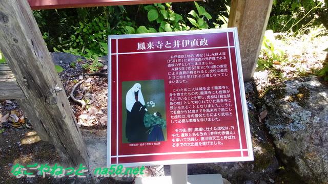 鳳来寺本堂付近の険しい坂道と龍の爪あと(愛知県新城市)