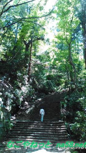 鳳来寺本堂から石段を下る坂道山の中