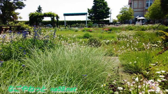 フラワーガーデン「ブルーボネット」の園内風景