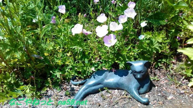 フラワーガーデン「ブルーボネット」の園内風景片隅の猫